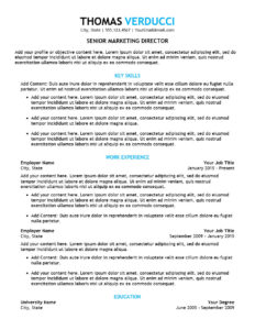 Executive Plus Resume Template