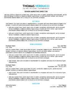 Executive Plus Resume Template