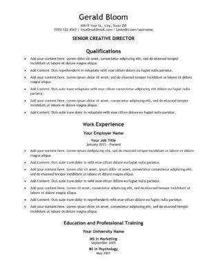 Pro Plus Resume Template